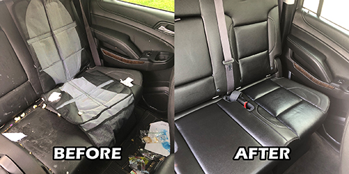 Before: dirty, debris-filled leather backseat. After: clean, shiny and conditioned seats.